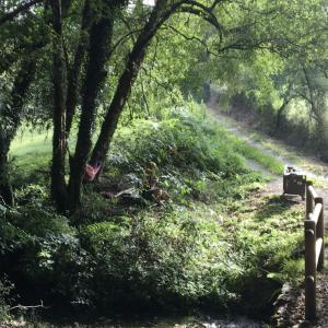 Day 10 on the Camino Primitivo, Boente to Lavacolla, 38km
